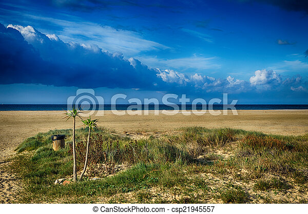 Seascape with beach and palms - csp21945557