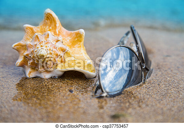 Seashell and sun glasses on sand of the beach in sunlight, background, close up - csp37753457