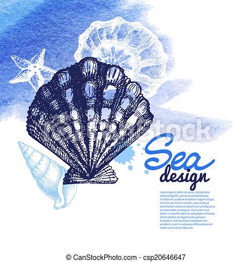 Seashell background - csp20646647