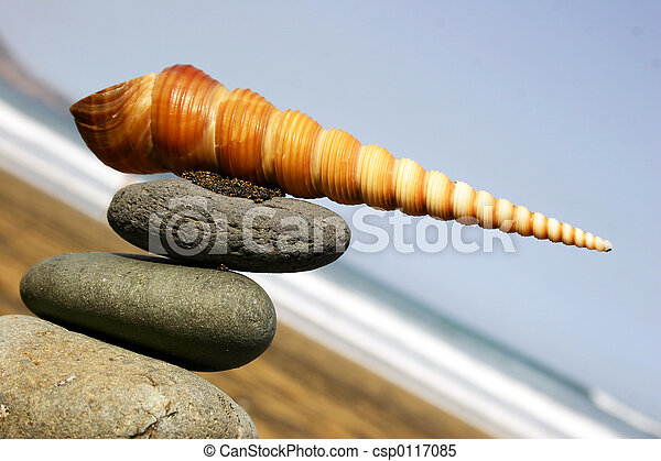 Seashell Sign - csp0117085