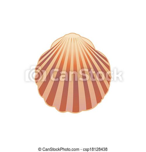 Concha marina. Ilustración vectorial: 10. - csp18128438