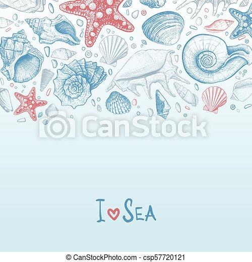 seashells, fond - csp57720121