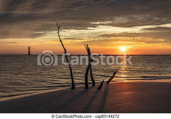 Seaside Sentinels - csp83144272