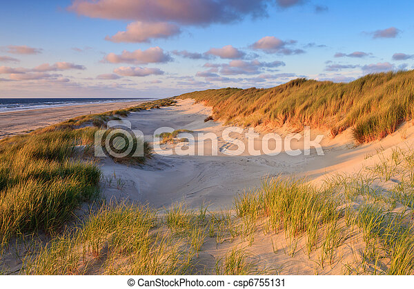 Seaside with sand dunes at sunset - csp6755131