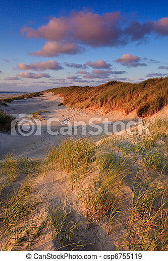 Seaside with sand dunes at sunset - csp6755119