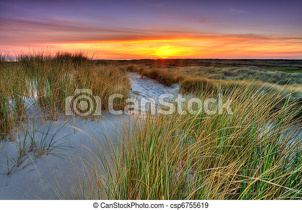 Seaside with sand dunes at sunset - csp6755619