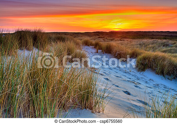 Seaside with sand dunes at sunset - csp6755560