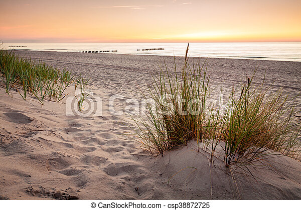 Seaside with tuft of grass, sand dunes and colorful sky at sunset. - csp38872725