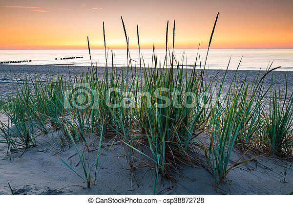 Seaside with tuft of grass, sand dunes and colorful sky at sunset. - csp38872728