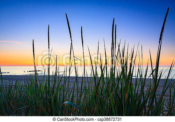 Seaside with tuft of grass, sand dunes and colorful sky at sunset. - csp38872731