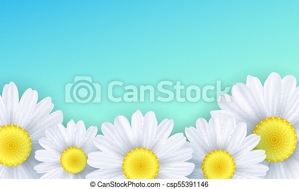 Seasonal background. Camomiles flowers on a green background. Vector illustration - csp55391146