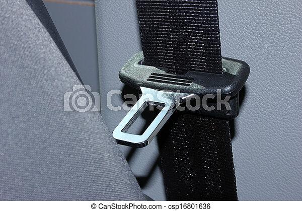 seat belt - csp16801636