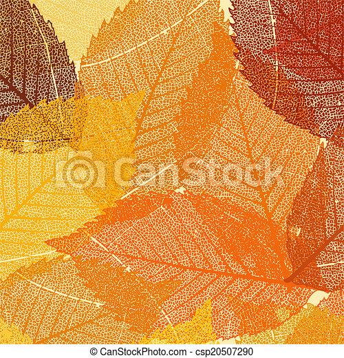 sec, feuilles, eps, automne, 8, template. - csp20507290