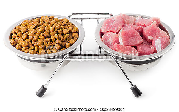 sec, nourriture, naturel, animaux familiers - csp23499884