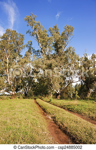 Secluded Country Road - csp24885002