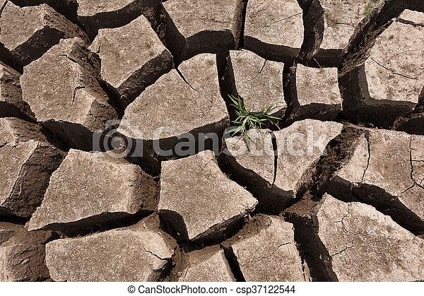 seco, agua, agrietado, tierra, sin - csp37122544
