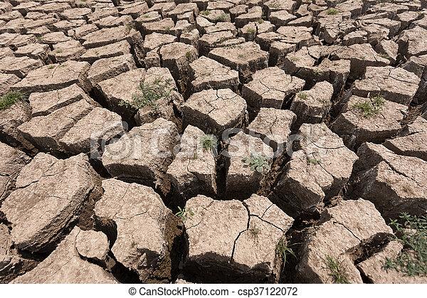 seco, agua, agrietado, tierra, sin - csp37122072