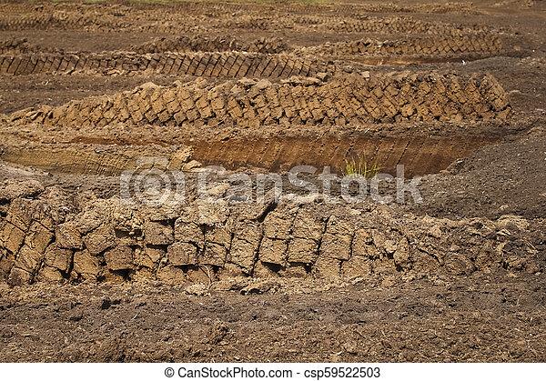 Extracción de Peat, bloques de césped apilados hasta secarse, destrucción de la naturaleza industrial de un pantano criado - csp59522503