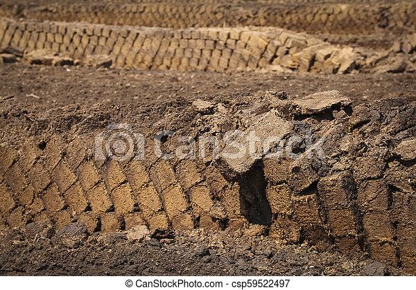 Extracción de Peat, bloques de césped apilados hasta secarse, destrucción de la naturaleza industrial de un pantano criado - csp59522497