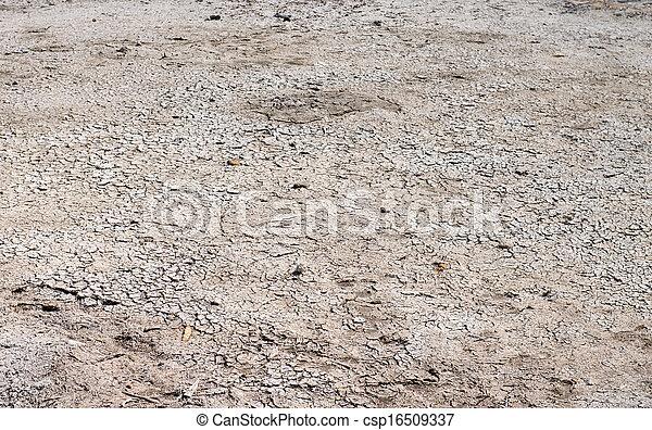 Terreno seco agrietado - csp16509337