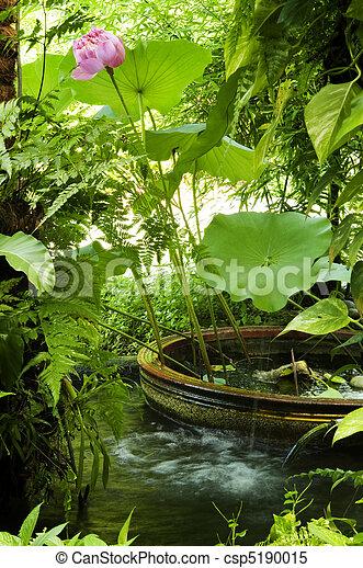 Secret garden - csp5190015