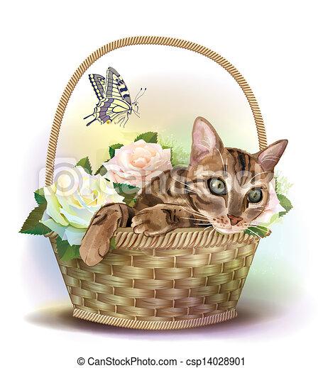 seduta, tabby, illustrazione, gatto, roses., cesto - csp14028901