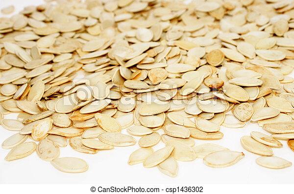 Seed of pumpkin - csp1436302