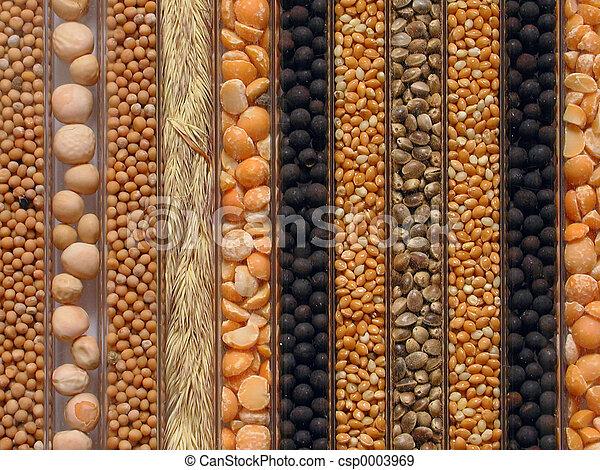 Seeds - csp0003969