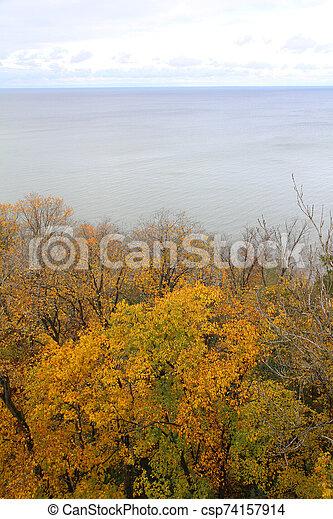 seis, floresta, outono - csp74157914