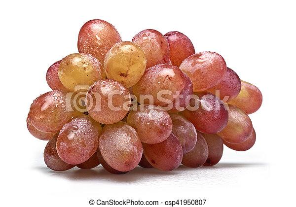 seleccionar, lavado, freshly, uvas, um - csp41950807
