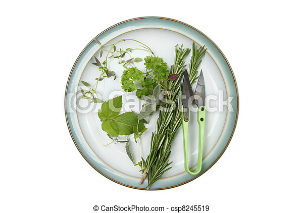 Selection of herbs on a plate - csp8245519