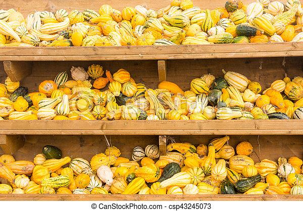 Selling pumpkins at the market - csp43245073