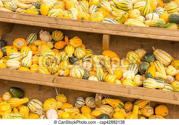 Selling pumpkins at the market - csp42882138