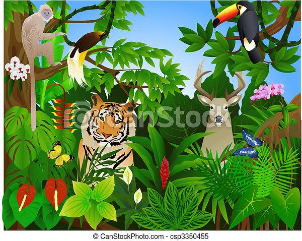 Animal en la selva - csp3350455