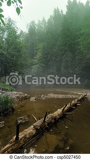selva - csp5027450