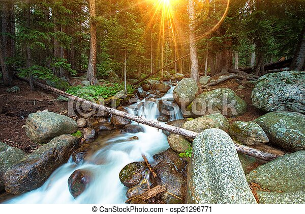selva, cachoeiras - csp21296771