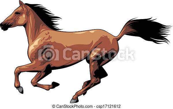 selvagem, cavalo marrom - csp17121612