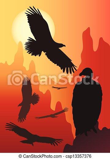 selvagem, pássaros, natureza - csp13357376