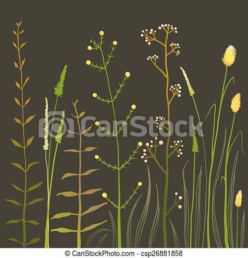 selvatico, campo, fiori, erba, nero - csp26881858