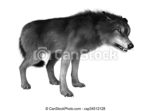 Selvatico lupo bianco. render isolato lupo fondo digitale