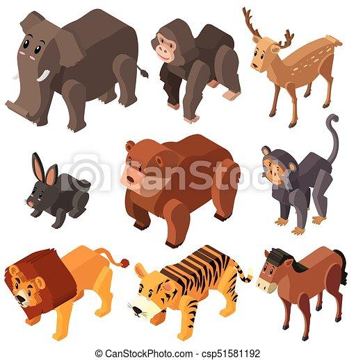 Selvatico Molti Disegno Animali 3d Animali Molti