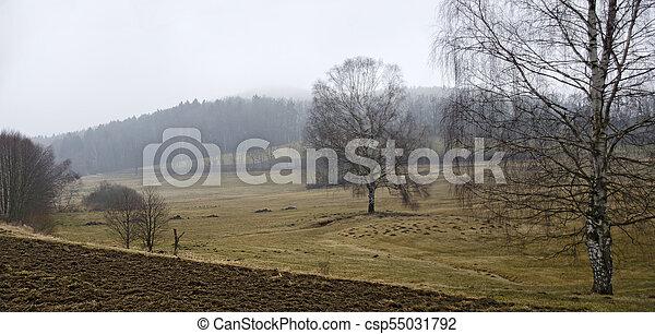 sem, neve paisagem, wintery - csp55031792