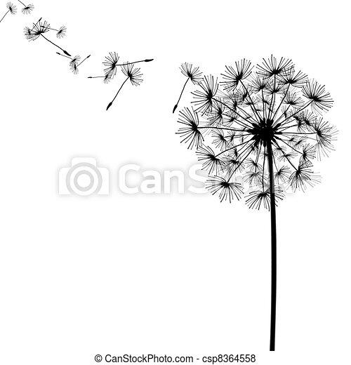 Dandelion con semillas en el viento - csp8364558