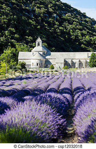 Senanque abbey with lavender field, Provence, France - csp12032018