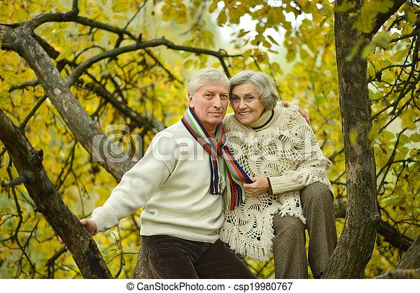 Senior couple in park - csp19980767