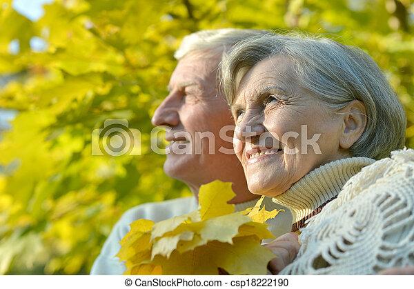 Senior couple in park - csp18222190