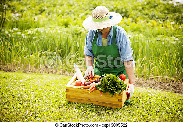 Senior woman with vegetables - csp13005522