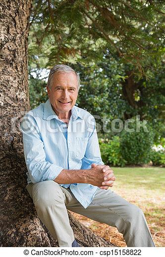 sentando, árvore, maduras, tronco, feliz, homem - csp15158822
