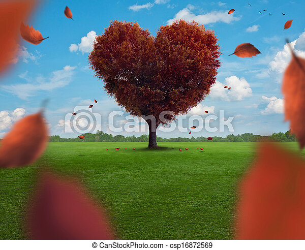 serce, drzewo - csp16872569
