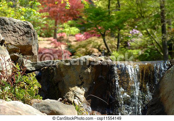 Serenity at Woodland Garden - csp11554149
